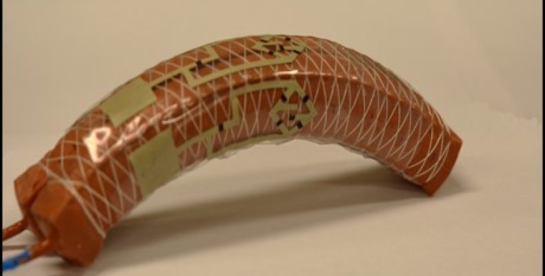 Soft Robot: With Stretchable Transistor Enables Neurological Functioning